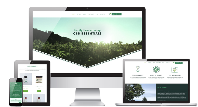 CBD Web Development